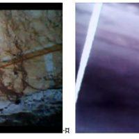 igure 7 (à gauche) : Présence de traces biologiques (coniophore) sur le mur observé Figure 8 (à droite) : Bande visible en sous-face de la voûte
